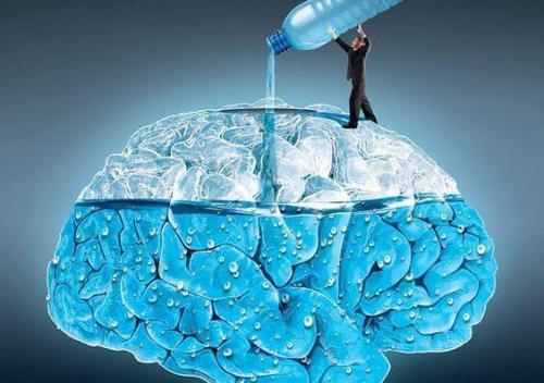 beber-agua-cerebro